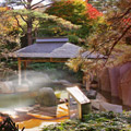 JAL国内線に乗って温泉へ行こう!